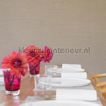 Kandy silk projectkwaliteit papel de parede Elitis Her Majesty HPC cv-104-30