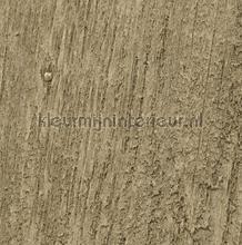 Alder behang Koroseal project wandbekleding