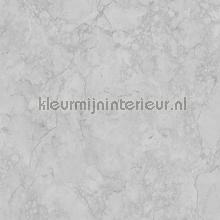 Marmer grijs tapet Dutch Wallcoverings Vintage Gamle