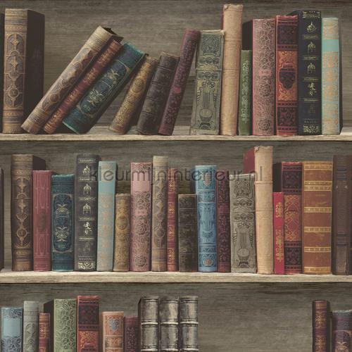Antieke Boeken In Een Kast