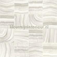 Marmer blokdessin tapeten Dutch Wallcoverings Home L32807