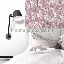 Roze bloesem tapeten Dutch Wallcoverings Home l331-03