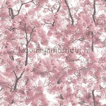 Roze bloesem carta da parati Dutch Wallcoverings Home l331-03