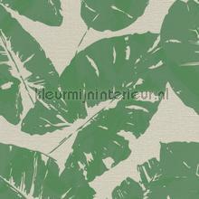 Gebladerte groen behang Rasch Hotspot 805222