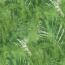 Palmtakken groen behang Rasch Hotspot 805314
