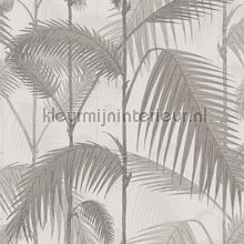 Palm Jungle papel de parede Cole and Son Icons 112-1004