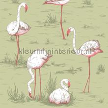 Flamingos papel de parede Cole and Son Icons 112-11038