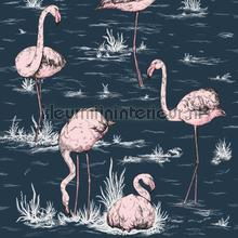 Flamingos papel de parede Cole and Son Icons 112-11041