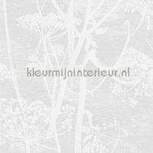 Cow Parsley papel de parede Cole and Son Icons 112-8027