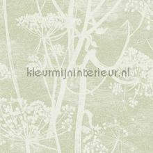 Cow Parsley papel de parede Cole and Son Icons 112-8029