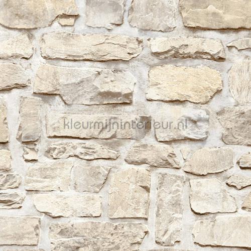 Grove gemetselde stenen muur carta da parati 36370-3 interiors AS Creation