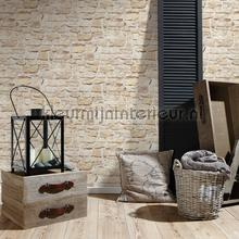 96981 wallcovering AS Creation wallpaper Top 15
