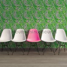 97032 wallcovering AS Creation wallpaper Top 15