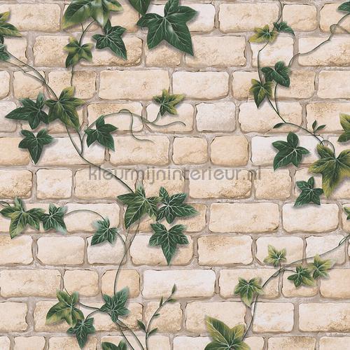 Klimop mur lichte stenen tapet 9804-34 Il Decoro AS Creation