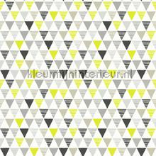 Jester - Lime tapet Arthouse Imagine Fun 2 696006