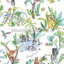 Jungle Mania Multi behang Arthouse jongens