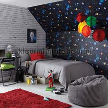 Cosmos - charcoal behang Arthouse jongens