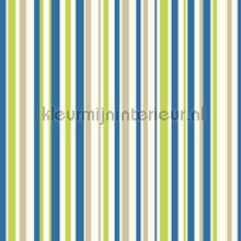 Earn your stripes - blue and green wallcovering Arthouse all-images