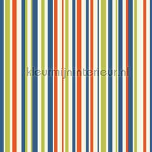 Earn your stripes - multi wallcovering Arthouse all-images