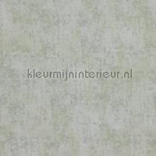 Verweerde kleurschakeringen papier peint BN Wallcoverings Indian Summer 218530