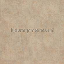 Verweerde kleurschakeringen papier peint BN Wallcoverings Indian Summer 218533
