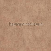 Verweerde kleurschakeringen papier peint BN Wallcoverings Indian Summer 218534