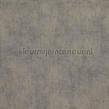Verweerde kleurschakeringen papier peint BN Wallcoverings Indian Summer 218536