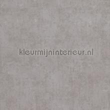 Verweerde kleurschakeringen papier peint BN Wallcoverings Indian Summer 218538
