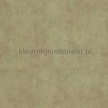 Verweerde kleurschakeringen papier peint BN Wallcoverings Indian Summer 218540