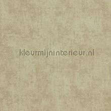Verweerde kleurschakeringen papier peint BN Wallcoverings Indian Summer 218541