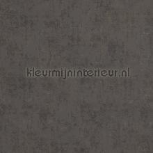 Verweerde kleurschakeringen papier peint BN Wallcoverings Indian Summer 218542