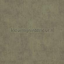 Verweerde kleurschakeringen papier peint BN Wallcoverings Indian Summer 218544