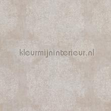 Indiaas verfijnd bloembolpatroon papier peint BN Wallcoverings Indian Summer 218551
