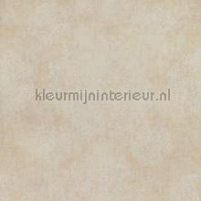 Indiaas verfijnd bloembolpatroon papier peint BN Wallcoverings Indian Summer 218553