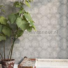 BN Wallcoverings Indian Summer behang collectie