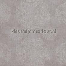 Indiaas verfijnd bloembolpatroon papier peint BN Wallcoverings Indian Summer 218555