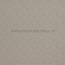 73755 papier peint BN Wallcoverings Indian Summer 218576