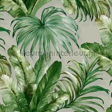 Palm leaves tropical jungle XL roll behang AdaWall Indigo 4714-3