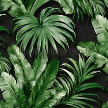Palm leaves tropical jungle XL roll behang AdaWall Indigo 4714-5