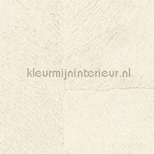 Appaloosa hpc papier peint Elitis Indomptee Appaloosa HPC CV-113-01