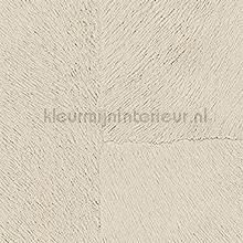 Appaloosa hpc papier peint Elitis Indomptee Appaloosa HPC CV-113-02