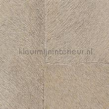 Appaloosa hpc papier peint Elitis Indomptee Appaloosa HPC CV-113-06