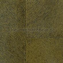 Appaloosa hpc papier peint Elitis Indomptee Appaloosa HPC CV-113-15