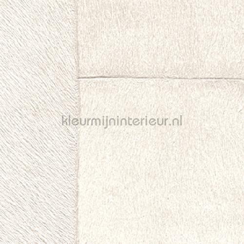Appaloosa L ours blanc behang VP 618 01 Indomptee Elitis