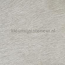 Movida Monnaie d echange wallcovering Elitis Indomptee VP-625-04
