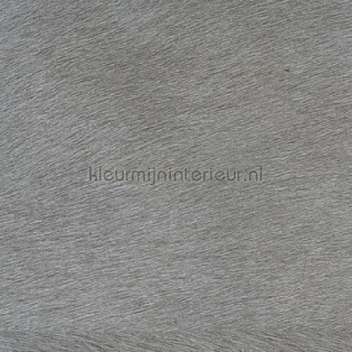 Movida A la conquete du monde behang VP 625 05 Indomptee Elitis