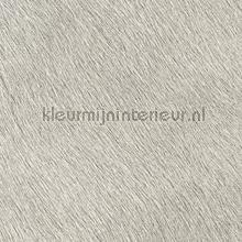 Movida Du premier rang wallcovering Elitis Indomptee VP-625-28