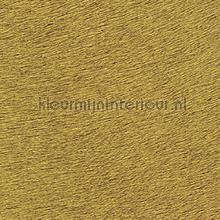 Movida captive du desert wallcovering Elitis Indomptee VP-625-45