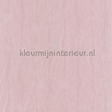 Pastel woodgrain behang Caselio Modern Abstract