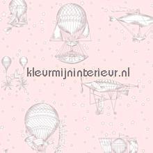 Luchtvaartuigen roze behang Hookedonwalls meisjes